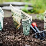 BHPH Dealerships can prepare for a Coming Recession - Dollar Bills Planted in Soil like Growing Seedlings