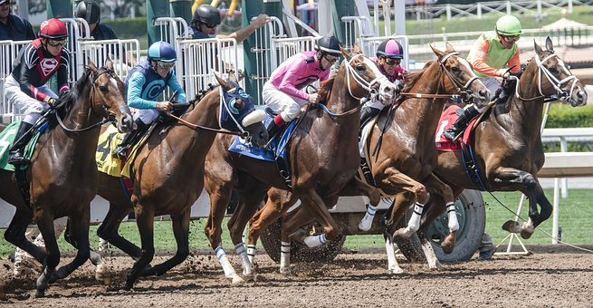 BHPH Conference Cut to the Chase - Image of race horses leaving the starting gate